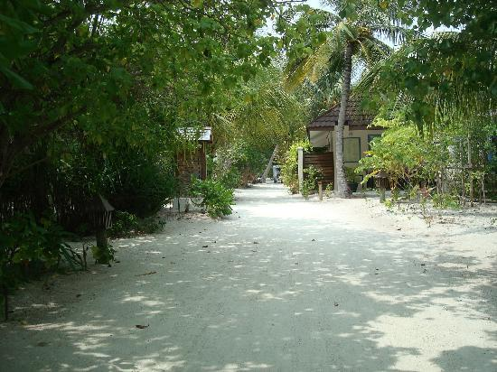 Lily Beach Resort & Spa: Road to Happiness