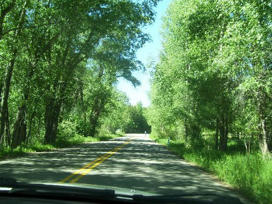 Mount Elbert Lodge: Highway 82