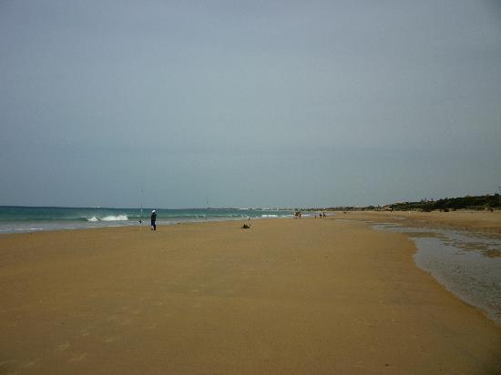 Iberostar Royal Andalus: The beach