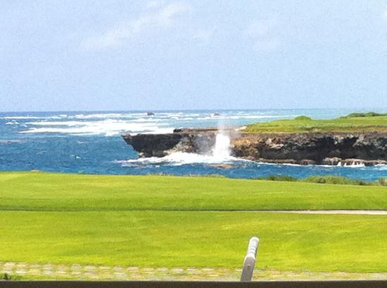 Tortuga Bay Hotel Puntacana Resort & Club: Corales Golf Club - Great course.