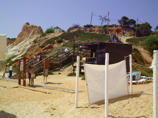 Alpinus Hotel: Again the beach
