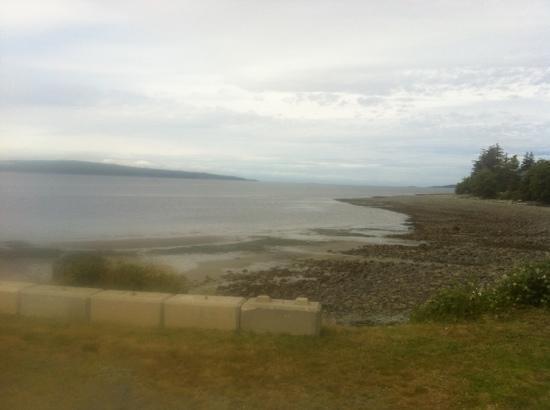 Beach Gardens Resort & Marina: view