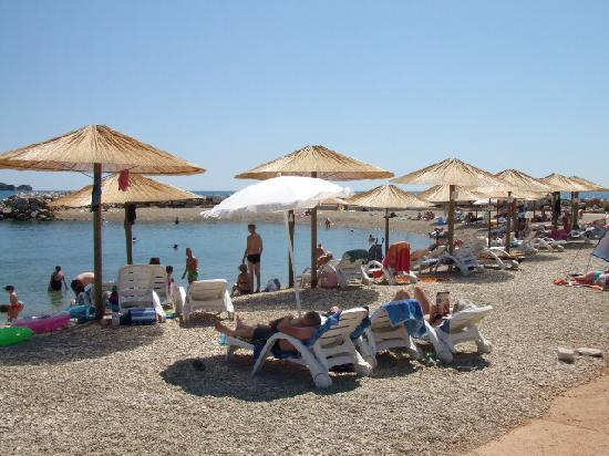 Aminess Maestral Hotel : small beach