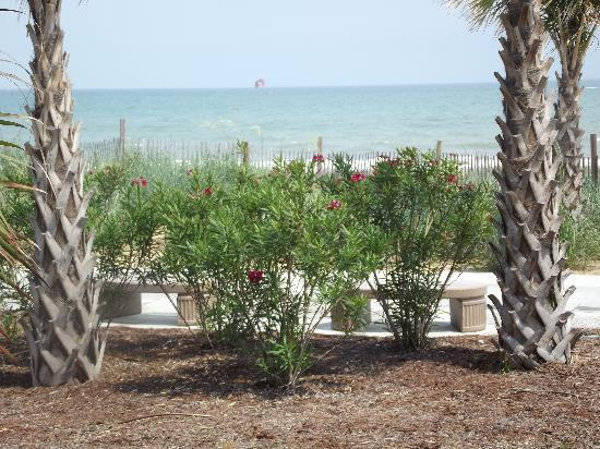 Diplomat Myrtle Beach Reviews