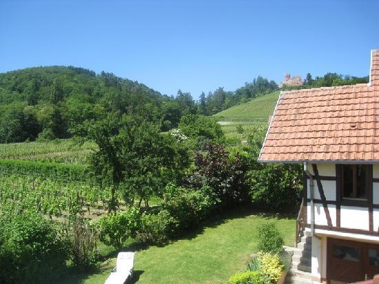 Les gites du relais des vignes kintzheim france voir les tarifs et avis ranch tripadvisor - Point relais bon prix ...