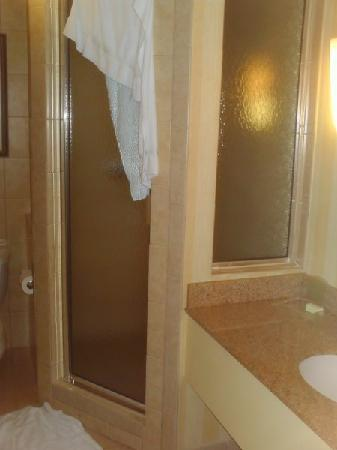 Holiday Inn-Asheville Biltmore West: Spacious shower with fancy showerhead