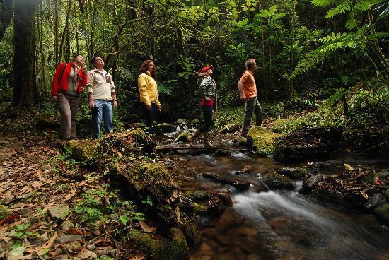 Savegre Hotel, Natural Reserve & Spa: Walking Tour