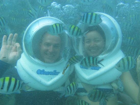Bali Success Day Tours: Seawalker