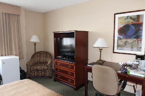 Northern Grand Hotel: Fridge and TV