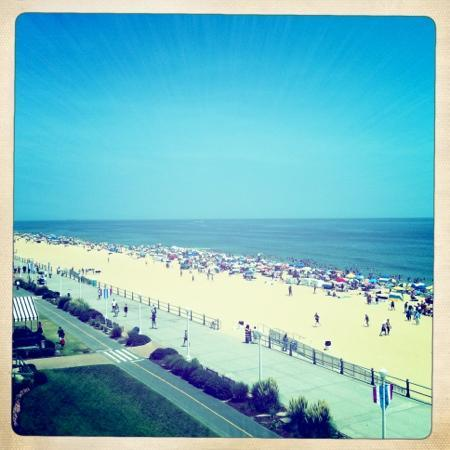 SpringHill Suites Norfolk Virginia Beach: the beach