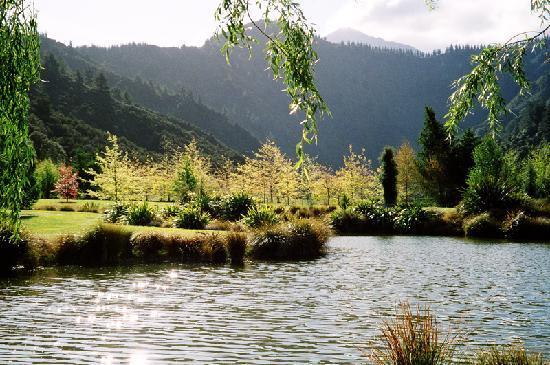 Jefferswood Bed and Breakfast: Jefferswood wildlife pond