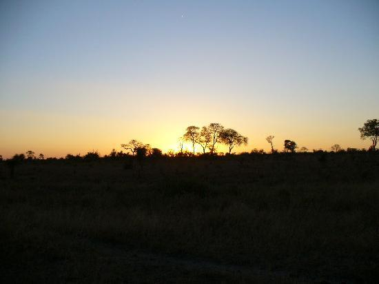 Hamiltons Tented Safari Camp: African Sunset