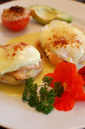 Ogopogo B & B: Smoked Salmon Eggs Benny