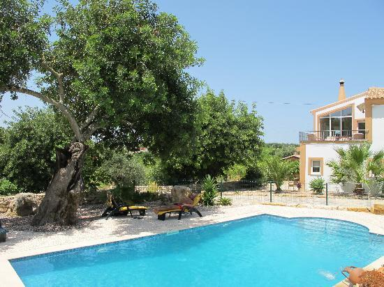 Quinta Arruba Guest House : SWIMMING POOL