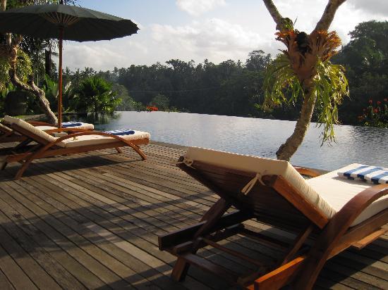 Alam Ubud Villa: pool with the amazing view!
