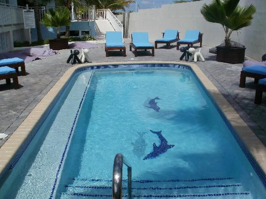 Dolphin Suites: Swimmingpool