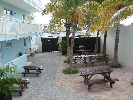 Dolphin Suites: Picknick area