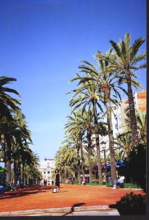 Hotel Athene Neos : promenade Lloret de Mar