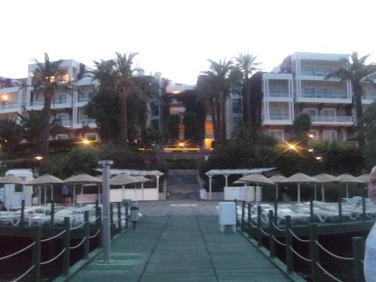 Hotel Baia Bodrum: Beautiful settings, lovely hotel.
