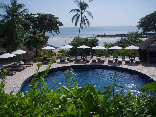Coral Bay Resort: The swimming pool and beach backwards