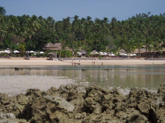 Coral Bay Resort: The beach front