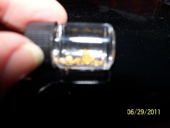 Gold Prospecting Adventures: Gold we found