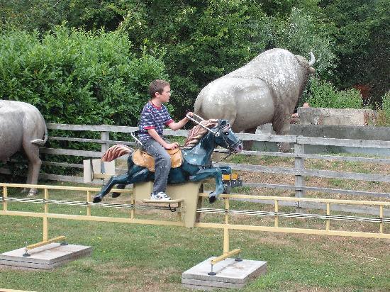 Milton Keynes, UK: Pony Express