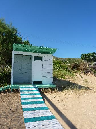 Hotel Perrakis: Beach