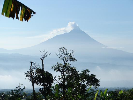 Villa Sumbing Indah: Le Mérapi dont les colères sont redoutables