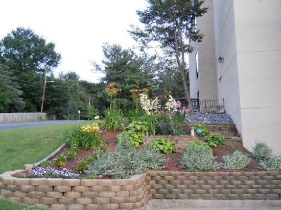 Days Inn Harrisonburg : Garden at Days Inn