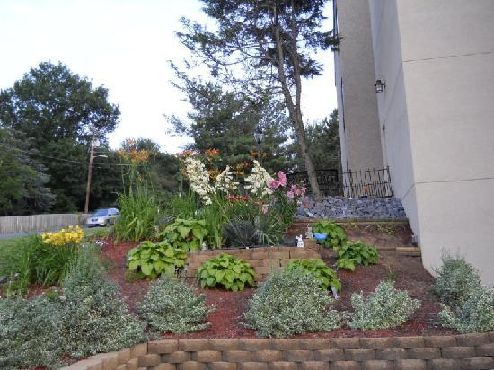 Days Inn Harrisonburg: landscaping