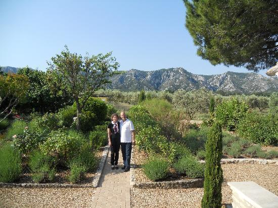 The Alpilles Mountains Over The Olive Groves And Gardens At Mas Bellevue