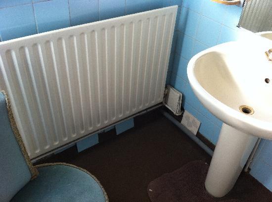 Tudor Lodge Hotel: bathroom