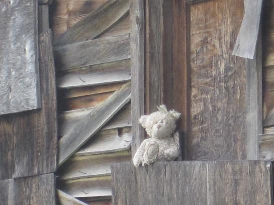 High Country Inn: Find the bear in Stanley Idaho