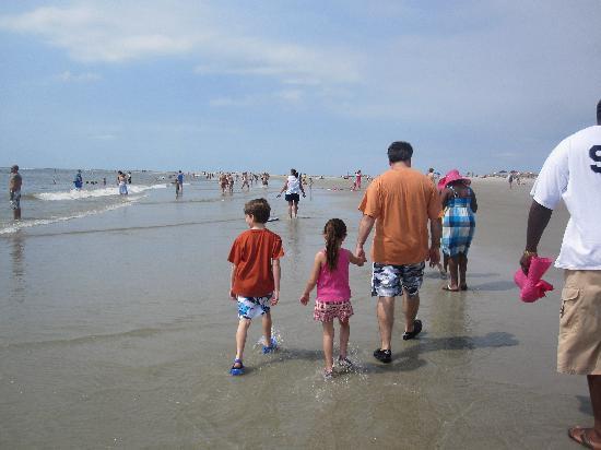 Tybee Island Marine Science Center: Beach walk