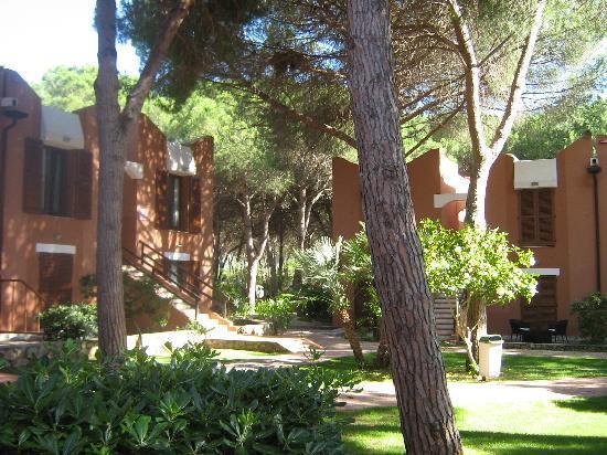 Corte Rosada Couples Resort & SPA: camere tra i pini