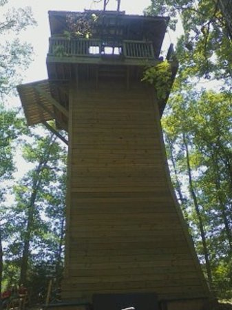 Loco Ropes: A view from the free-fall tower