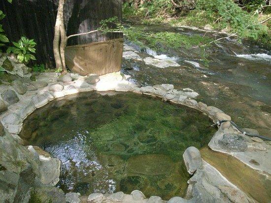 Ryokan Fujimoto: 小川の横の露天風呂m野天風呂に近いですね