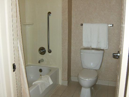Trickle Creek Lodge: bathroom - shower and toilet