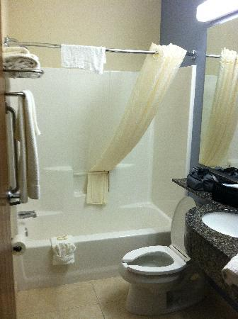 Microtel Inn & Suites by Wyndham Elkhart: Bathroom