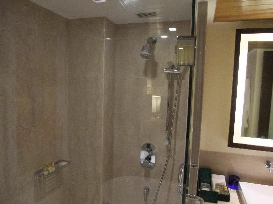 The Oberoi, Mumbai : shower
