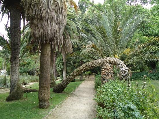 Cagliari, إيطاليا: Orto Botanico, Cagliari