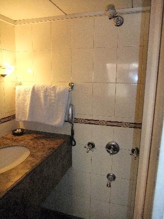 Midland Hotel: shower