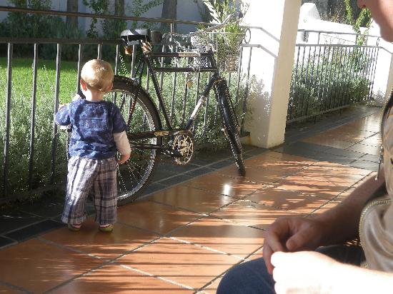 Gooding's Groves Olive Farm & Guest House: Max playing on the stoep...