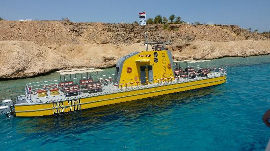 Reef Oasis Blue Bay Resort: Glass bottom submarine