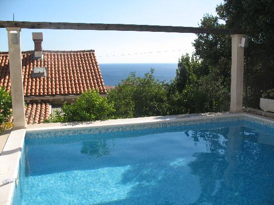 Villa Klaic: Pool view
