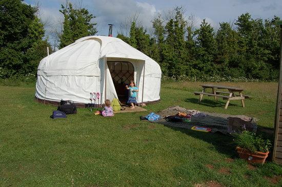 Cuckoo Down Farm: our home, Buttercup yurt