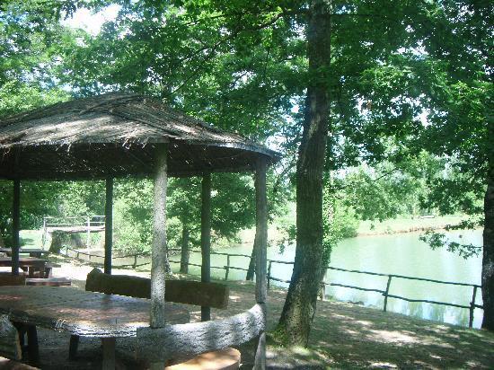 Borgo Il Castagno: Down by the lake