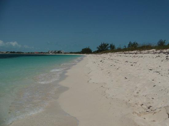 La Vista Azul Resort: Beach