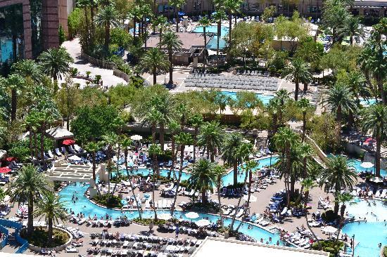 Signature at MGM Grand: MGM Pool